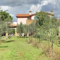 006-villa