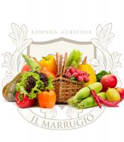 Frutta, nettari e confetture